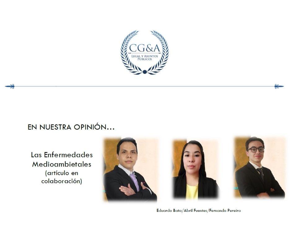 CG&A Las Enfermedades Medioambietales (artículo en colaboración)